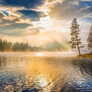 pine_tree_lake_clouds_morning